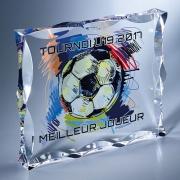 Trophée couleur plaque biseautée