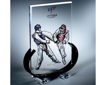 Trophée en plexiglass rectangulaire 3