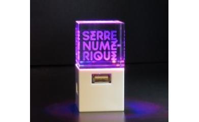Création de logo société gravé sur verre pour la Serre Numérique image 2